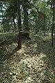 Stenkumla gravfält 4-1 - KMB - 16001000006848.jpg