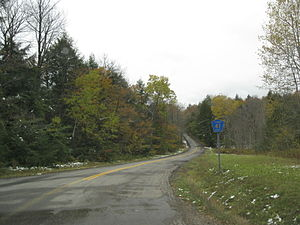 Steuben County Route 41 reassurance marker.jpg