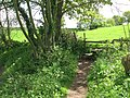 Stile on circular walk - geograph.org.uk - 1285327.jpg