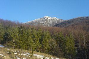 Strážov Mountains - View of Strážov from Zliechov.