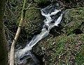 Stream Glen Helen (1695954007).jpg