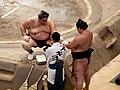 Sumo -Tokyo 2010 09 23 a.jpg