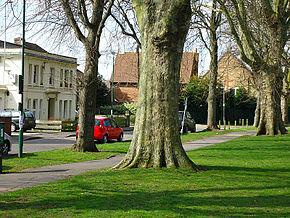 Sutton, Surrey London Sutton Green 7