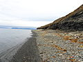 Svalbard coast line.jpg