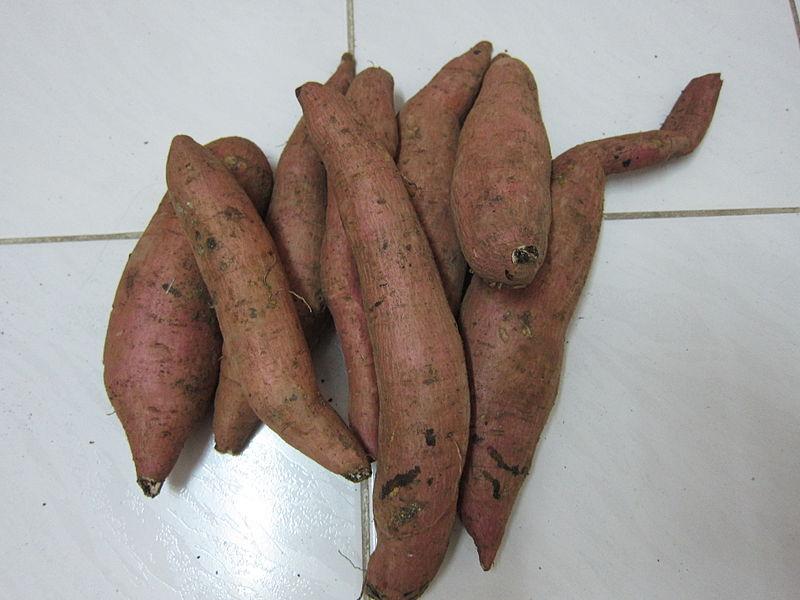 File:Sweet Potato - മധുരക്കിഴങ്ങ്.JPG