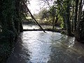 Swollen River Ebble near St John the Baptist Church, Bishopstone - geograph.org.uk - 356131.jpg
