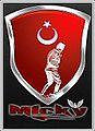 Türk Hacker.jpg