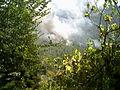 Tallacano incendio 2007 (02).jpg