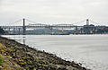 Tamar bridges from Warren Point.jpg
