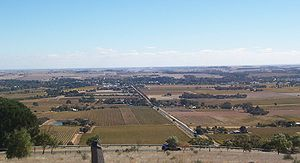Barossa Valley - Autumn colour surrounding Tanunda