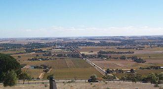 Tanunda, South Australia - Looking across the vineyards towards Tanunda from Mengler Hill Lookout