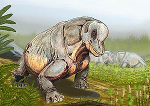 Tapinocephalus - Image: Tapinocephalus DB