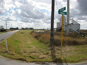 Tavener, Texas - Image: Tavener TX Engel and Buls
