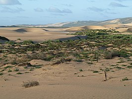 Fraser Island Homestead