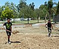 The Beginning of a Schoolyard Habitat at Oxnard College (14662199482).jpg