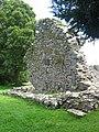 The Jumping Church, Kildemock, Ardee - geograph.org.uk - 1772397.jpg