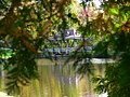 The Pagoda Bridge over what has always been known as The Artificial Lake, in Jackson Park Peterborough, ON Canada..jpg