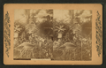The Palms, from Robert N. Dennis collection of stereoscopic views.png