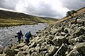 The Pennine Way beside the Infant River Tees - geograph.org.uk - 73984.jpg