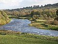 The River North Tyne - geograph.org.uk - 1032024.jpg