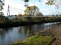 The Sabrina Bridge, Worcester - geograph.org.uk - 280039.jpg