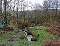 The stream from Stoke Flat - geograph.org.uk - 1586458.jpg