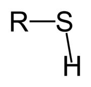 Sulphydryl