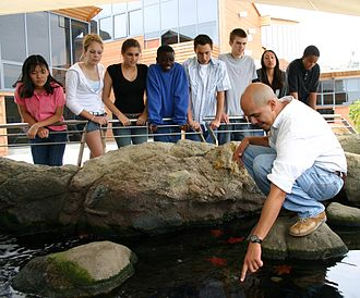 Ocean Institute - The Ocean Institute welcomes over 100,000 school children annually for ocean science and maritime history programs.