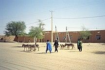 Mali-Attori e politiche agricole-Timbuktu herders