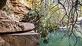 Tlemcen - Laurit Waterfall.jpg