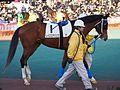 Tokyo Daishoten Day at Oi racecourse (31142111644).jpg