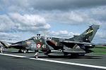 Tornado Italian Air Force (18625878299).jpg