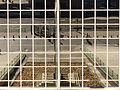 Torres Kio, simetría, Madrid, España, 2015.JPG