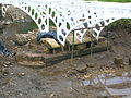 Tournament Bridge cutwater repairs.JPG