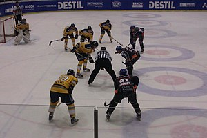Sport in the Netherlands - Match of the Eredivisie ice hockey league