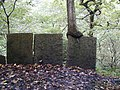 Tree on Flagstone wall. - geograph.org.uk - 424174.jpg
