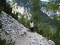 Triglav National Park (7893554044).jpg