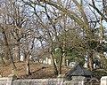 Trinity Cemetery (4455101821).jpg