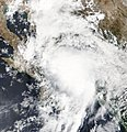Tropical Depression Nineteen-E shortly after formation on September 19.jpg
