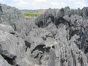 Tsingy de Bemaraha Strict Nature Reserve - A karst limestone formation, known as tsingy in Malagasy