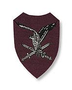 Tweede mouwembleem luchtmobiele brigade