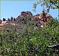 Two Shades of Red, Apple Orchard, Oak Creek Canyon, AZ 7-30-13c (9481862834).jpg