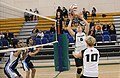 UFV men's volleyball vs Cap Nov 7 2014 32 (15140950804).jpg