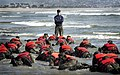 US Navy 030415-N-3953L-039 During a Hell Week surf drill evolution, a Navy SEAL instructor assists students from Basic Underwater Demolition-SEAL (BUD-S) class 245 with learning the importance of listening.jpg