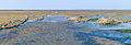 Uniek door eb en vloed steeds wisselend kweldergebied. Locatie, Noarderleech Provincie Friesland 39.jpg