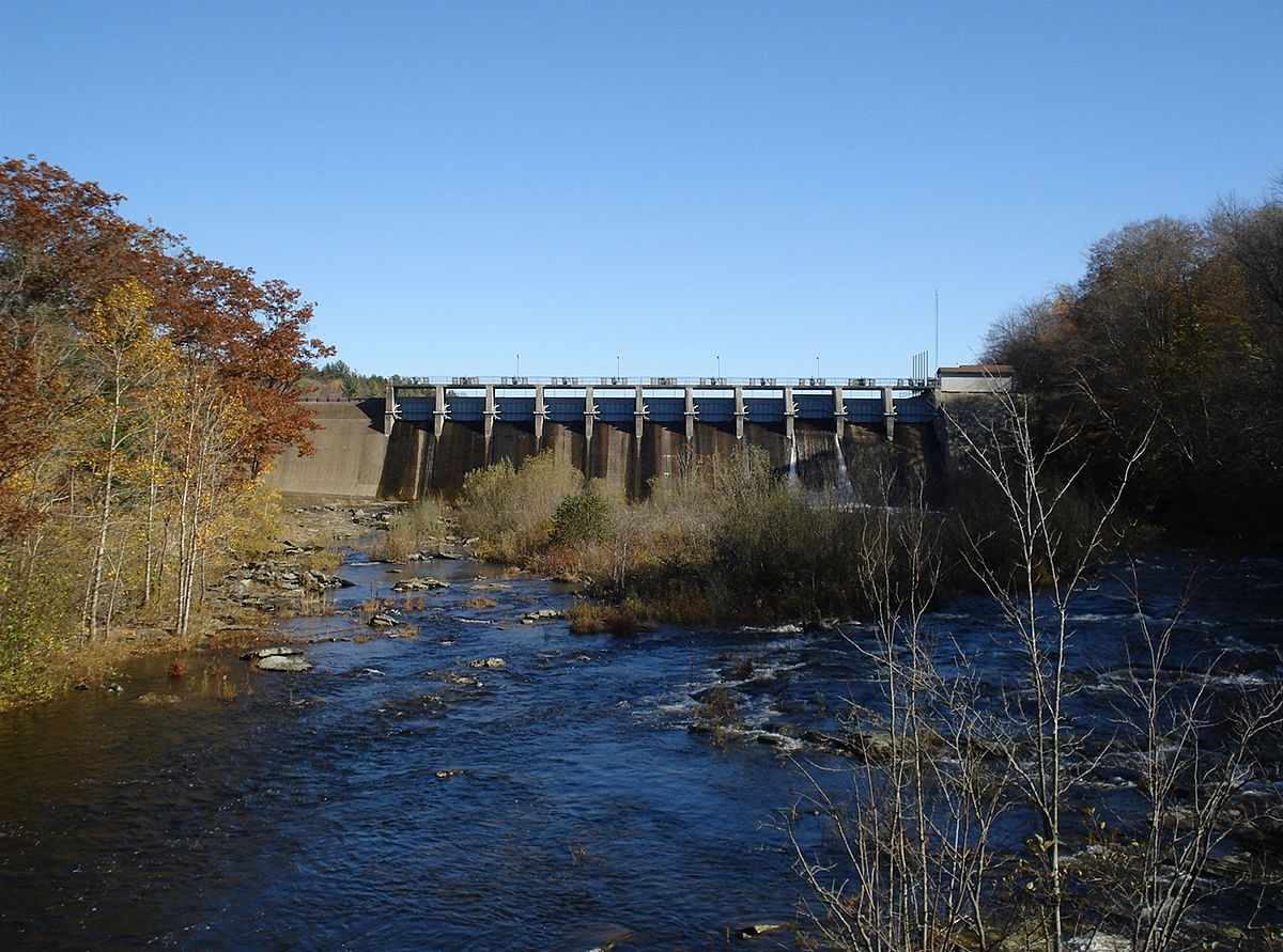 dam the salmon Tippy dam is known for its migratory runs of steelhead and salmon the dam itself is the upper boundary of these great game fish that leave the big water of lake.