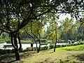 Ursus - panoramio (23).jpg