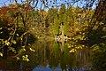 Végétation luxuriante de l'étang de la Longue Queue (22133586174).jpg