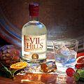VII Hills Italian London Dry Gin.jpg