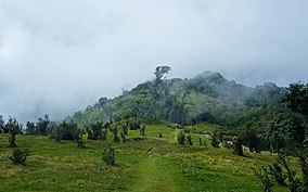 Vast green meadows and hills in Singalila National Park.jpg